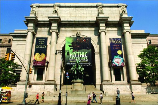 American Museum of Natural History Scavenger hunt Team building Programs