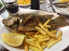Fresh Fried Tilapia - the whole fish, head to tail, with French Fries or Chips as they are referred to in Israel