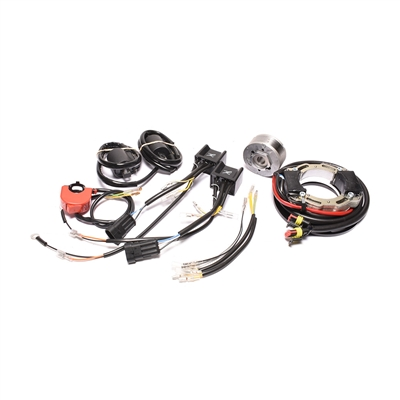 HPI CDI internal rotor ignition system for yamaha RD250