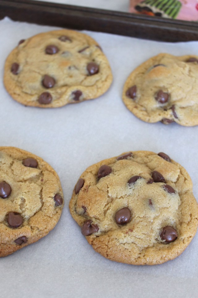 puffy-chocolate-chip-cookies