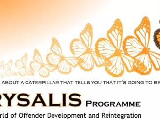A picture of the Chrysalis Programme
