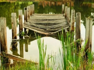A picture of a lake pier by Tom Butler