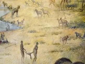 Human ancestors habitat 620