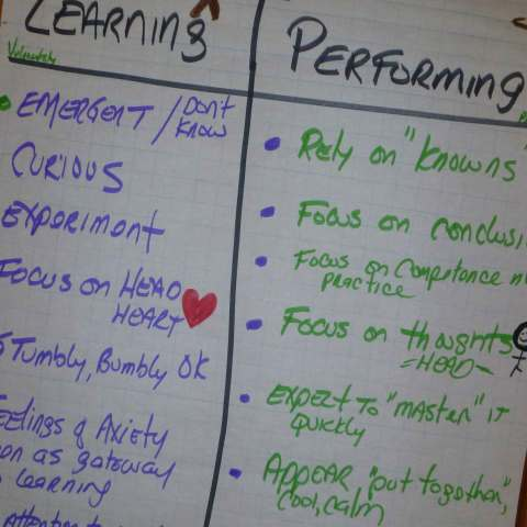 Learning vs Performing