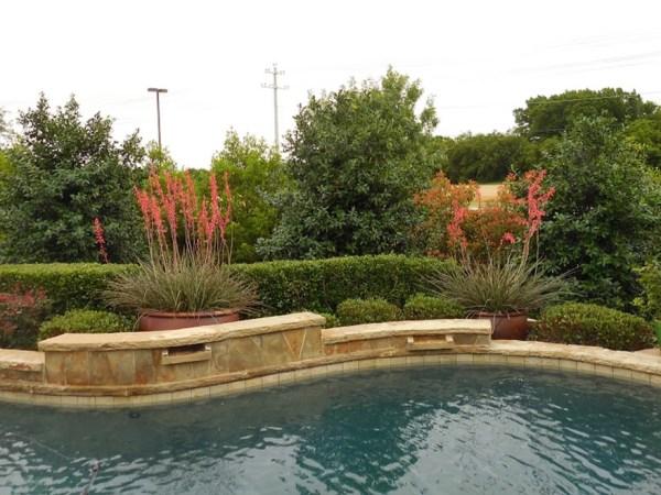 poolside landscape installations