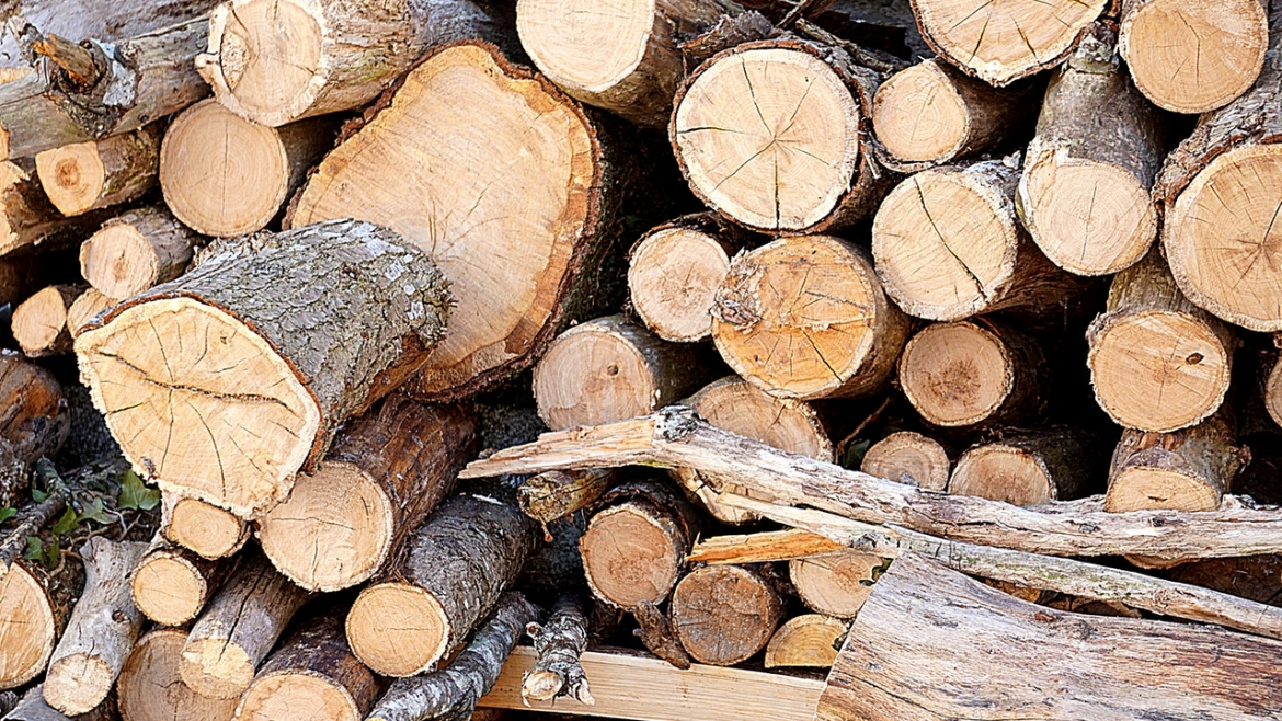 we have logs to