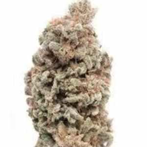 Berry White (Indica) THC:24.5%