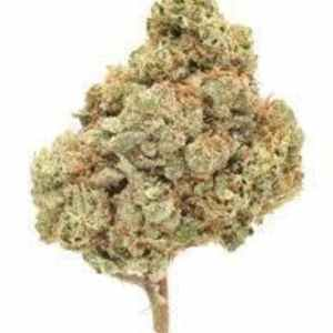 Private Reserve Cherry Phantom OG (Hybrid)- 50% Sativa/ 50% Indica THC:24.9%