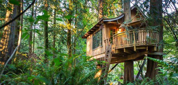 Tree House Hotel Washington