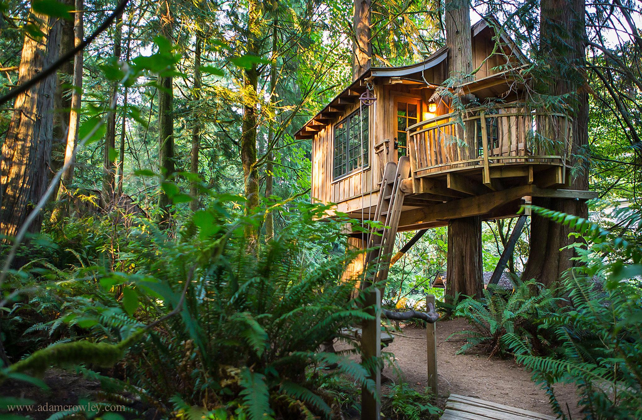 نتيجة بحث الصور عن hotel  Treehouse Point