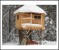 Tree House Plans & Design