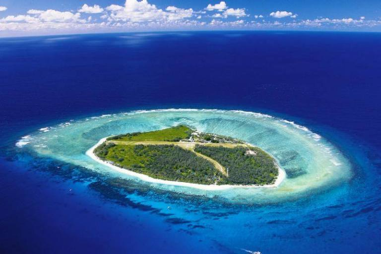 Tree Hugger Travel - What is eco-tourism - Lady Elliot Island Eco-Certified Tourism
