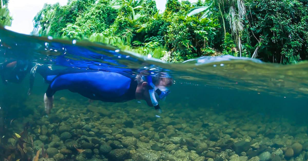 Daintree Rainforest River Snorkelling