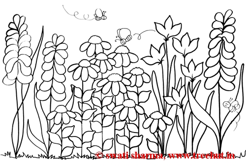 Coloring pictures of gardens and flowers