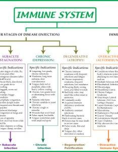 Immune color  also biological terrain for the system chart rh treelite