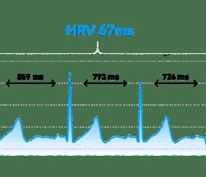 Heart Rate Variability Testing (HRV)