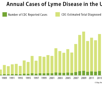 Lyme and Co-infections