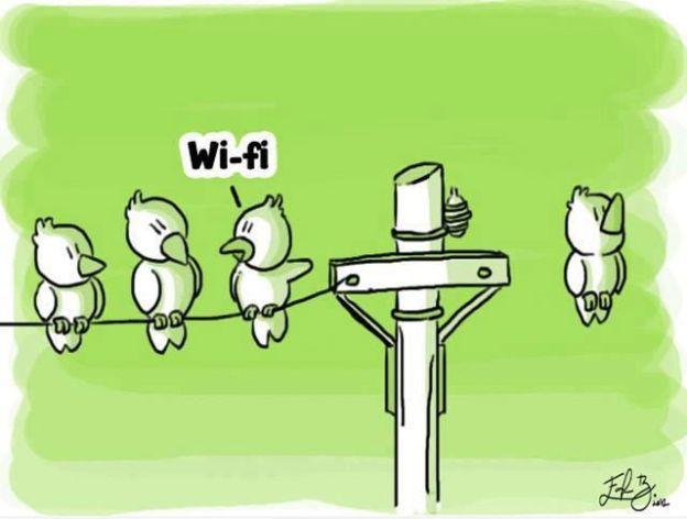 12 причин, чтобы наконец поставить Wi-Fi