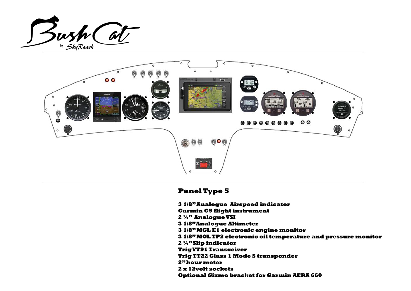 Treetop Aviation Skyreach Bushcat Light Sport As It