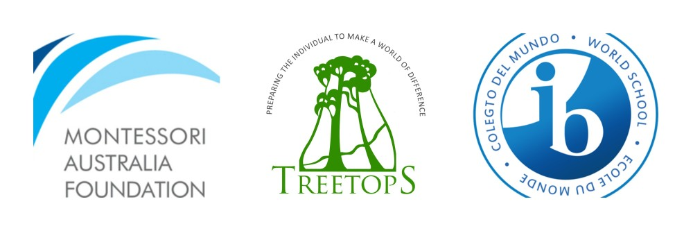 treetops-school-darlington-montessori-international-baccalaureate-ibo