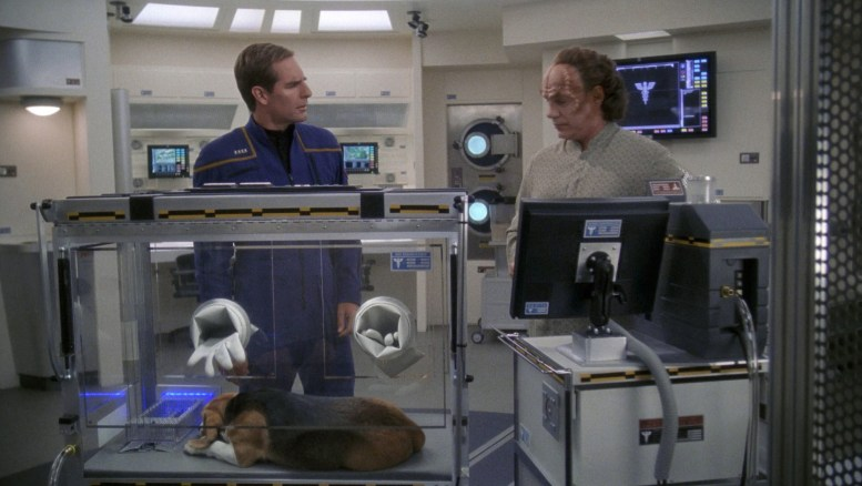 Porthos na enfermaria