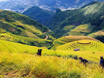 Discovery Sapa Tours Homestay 2 Days
