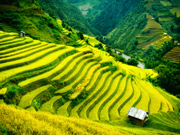Best Sapa Tours from Hanoi to Halong Bay 6 Days
