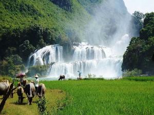 The magical attraction of Ban Gioc Waterfall