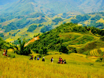 Sapa out of crowd – Ban Khoang – Ta Giang Phing villages