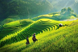 Sapa Tours from Hanoi Reviews: Three things you need to do