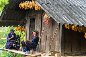 Sapa tours homestay are the best choice for travelers