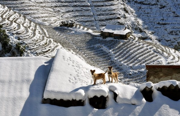 Sapa – the only place to has snow in Vietnam