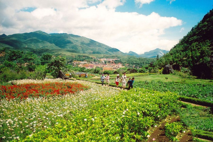 Ham Rong Flower Garden - the most attractive destination Sapa