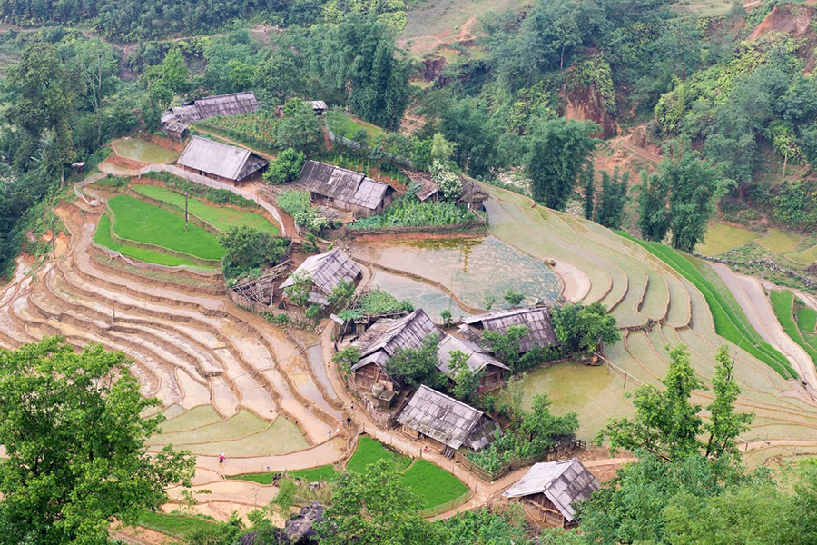 Muong Hoa Valley Sapa, Trekking Tour Muong Hoa Valley, Homestay