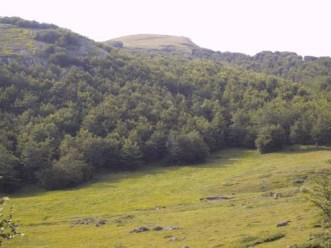 La vetta del Monte Bue vista da Prato Grande