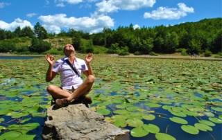Le ninfee gialle del Lago Bino