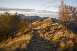 Il sentiero verso la Pania