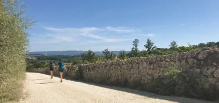 Strada bianca verso Monteriggioni
