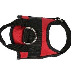 regatta reflective dog harness [ 1000 x 1000 Pixel ]