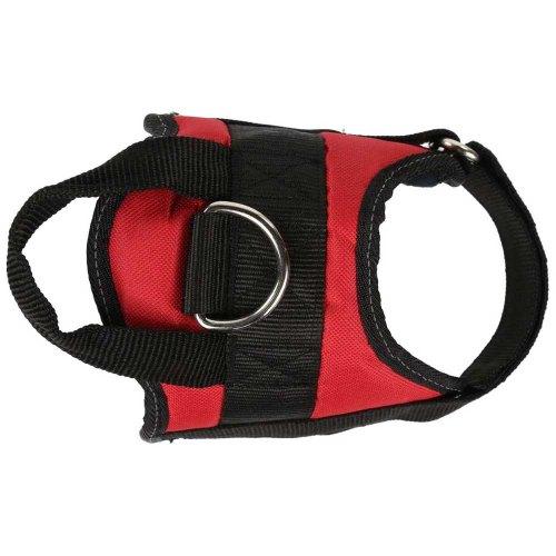 small resolution of regatta reflective dog harness