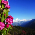 Ghorepani Poonhill September 2018
