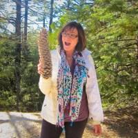 Kat's Big Pine Cone