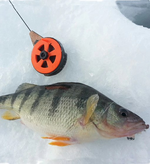 Ice Fishing - Mont Tremblant