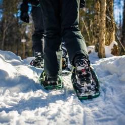 Snowshoeing - Mont Tremblant