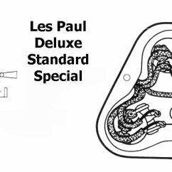 Gibson Les Paul Studio Deluxe Wiring Diagram Home Electric Ersatzteile Best Library Blogs