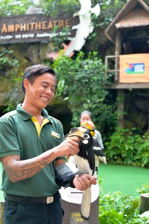 senior-avian-keeper-peter-teo-with-sally-an-oriental-pied-hornbill