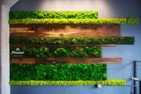 Amazing Wall Outdoor Design Ideas 41