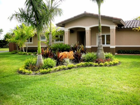 Cute Palm Gardening Ideas For Front Yard 08