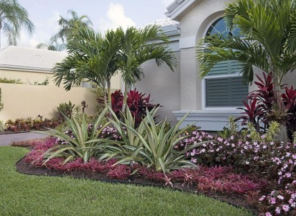 Cute Palm Gardening Ideas For Front Yard 17