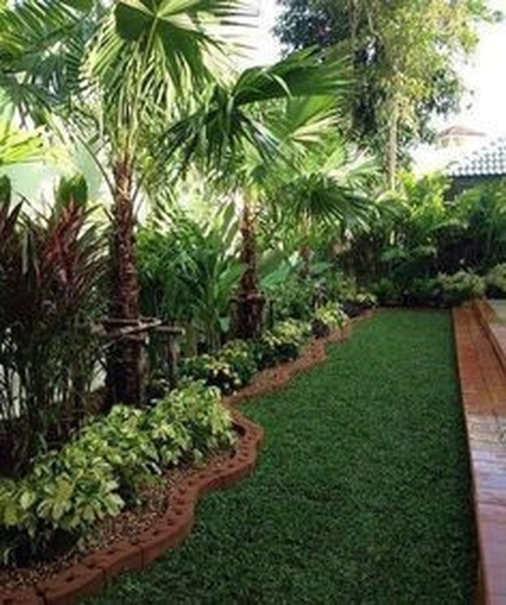 Cute Palm Gardening Ideas For Front Yard 20